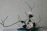 Composizione ikebana camelie