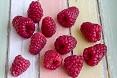 Lamponi frutti