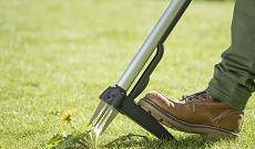 Estirpatore erbacce giardino